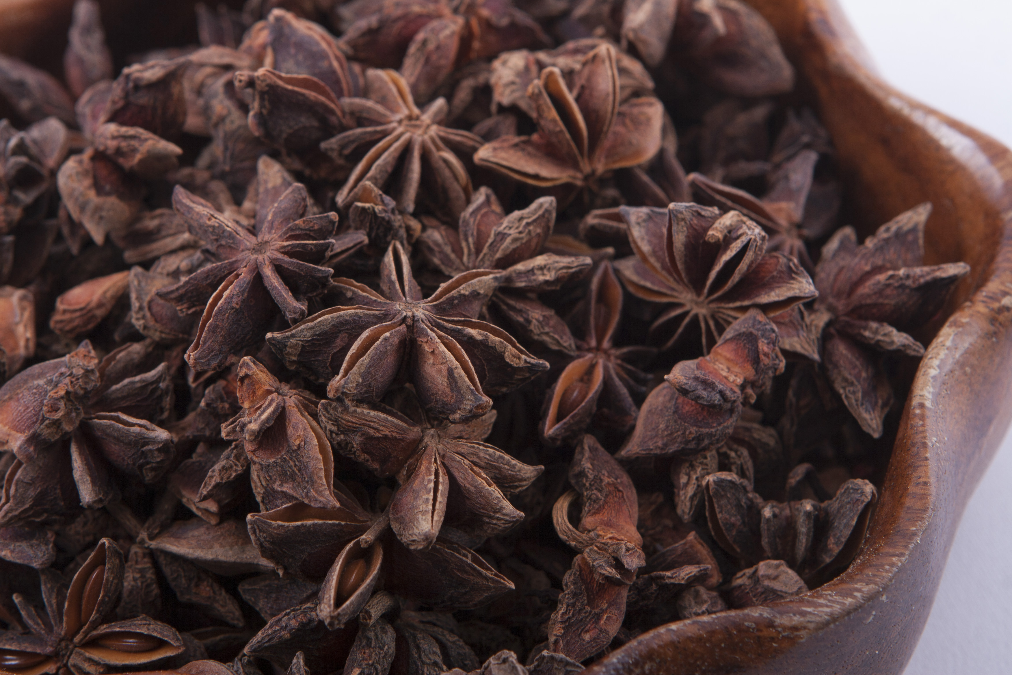 Star anise is an herb that is commonly grown in China Its also the main ingredient in the prescription drug Tamiflu